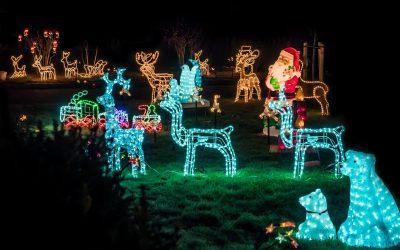 Wo gibt es die schönste Weihnachtsbeleuchtung? Wer hat den schönsten Weihnachtsbaum?